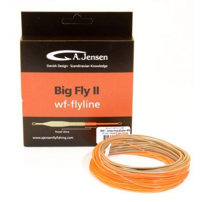 Big Fly II - Intermediate